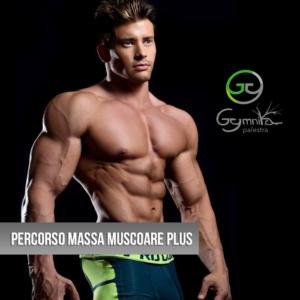 massa muscolare uomo